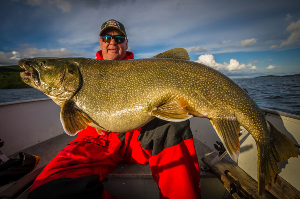 Barry Prall holds a 51 pound lake trout he caught on Tazin Lake in Northern Saskatchewan.