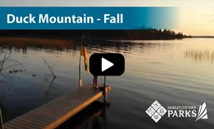 Duck Mountain Fall Camping